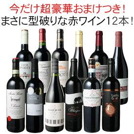 【送料無料】ワインセット 渾身 赤ワイン 12本 セット ボルドー フランス イタリア 南アフリカ スペイン ポルトガル 型破り赤 第29弾