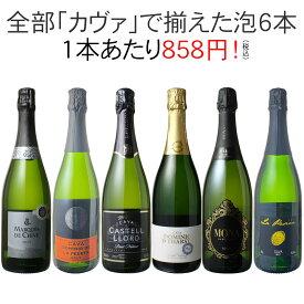 【送料無料】ワインセット カヴァ 6本 セット 辛口 シャンパン製法 瓶内二次発酵 スパークリングワイン カヴァだけ 第45弾