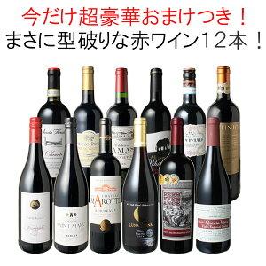 【送料無料】ワインセット 渾身 赤ワイン 12本 セット ボルドー フランス イタリア 南アフリカ スペイン ポルトガル 型破り赤 第30弾