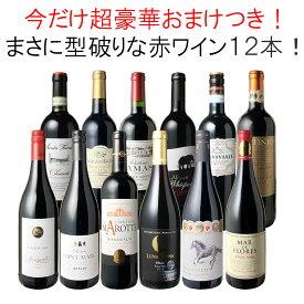 【送料無料】ワインセット 渾身 赤ワイン 12本 セット ボルドー フランス イタリア 南アフリカ スペイン ポルトガル 型破り赤 第32弾