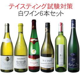 【送料無料】ワインセット ソムリエ&ワインエキスパート試験対策にもなる! 品種別 飲み比べ 6本 セット 白ワイン テイスティング 二次試験対策 第4弾