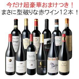 【送料無料】ワインセット 渾身 赤ワイン 12本 セット ボルドー フランス イタリア 南アフリカ スペイン ポルトガル 型破り赤 第34弾