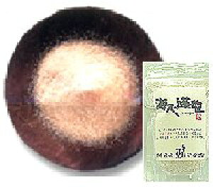 海人の藻塩 小袋タイプ100g【ネコポス6個まで対応】