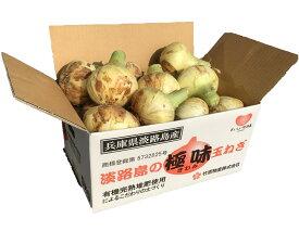 淡路島の新玉ねぎ 5kg箱入り 送料無料(沖縄、北海道を除く)
