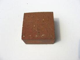 1.25kg/普通レンガ半マス ブラウンBRサイズ100×100×60mm[煉瓦 れんが ブロック 花壇 タイル ハーフサイズ]