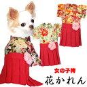 【犬 服 犬の服 ドッグウェア】女の子袴(はかま)花かれん【201811】【ペットウェア 着物 正月 七五三 ダックス トイプ…