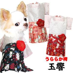 【11月わんわん月】【犬 服 犬の服 ドッグウェア】うららか袴(はかま)玉響【202009】【ペットウェア 着物 正月 七五三 ダックス トイプードル チワワ タムベディ かわいい ポメラニアン 着せ