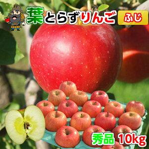送料無料 青森 りんご 葉とらずりんご サンふじ 10kg(36-40玉前後) 秀品 贈答用ランク 青森県産 産地直送 青研 | お土産 贈答用りんご お取り寄せ ギフト 詰め合わせ 葉とらず 果物 リンゴ 青