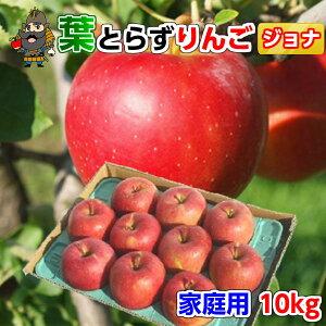 送料無料 青森 りんご 葉とらずりんご ジョナゴールド 10kg(36-40玉前後) ご家庭用 青森県産 産地直送 訳あり 10キロ | お土産 青森産 青研 葉とらず お取り寄せ 果物 取り寄せ リンゴ 青森リ