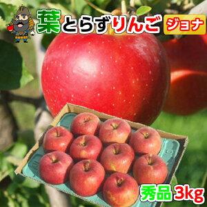送料無料 青森 りんご 葉とらずりんご ジョナゴールド 3kg(10-12玉前後) 秀品贈答用 青森県産 産地直送 | お土産 青森産 青研 贈答用りんご お取り寄せ ギフト 葉とらず 果物 ご当地 贈答品