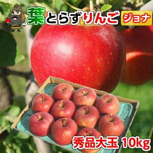 送料無料 青森 りんご 葉とらずりんご ジョナゴールド 10kg(28-32玉前後) 秀品大玉贈答用 青森県産 産地直送 | お土産 青研 贈答用りんご お取り寄せ ギフト 大玉 葉とらず 果物 贈答品 リン