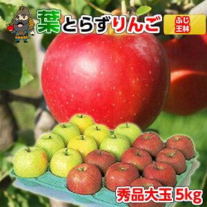 送料無料 青森 りんご 葉とらずりんご サンふじと王林セット 5kg(16玉前後) 秀品大玉 贈答用ランク 産地直送 青研 |お土産 葉とらず 果物 ギフト 大玉 贈答用りんご リンゴ 青森りんご 林檎