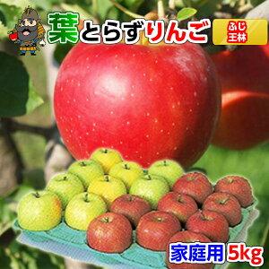 クール 送料無料 青森 りんご 葉とらずりんご サンふじと王林セット 5kg(18-20玉前後) ご家庭用ランク 青森県産 産地直送 青研 | お土産 お取り寄せ 詰め合わせ 葉とらず 果物 リンゴ 青森り