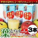 Applej-sam01