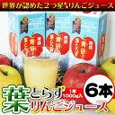 Applej sam02
