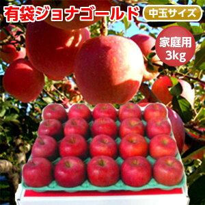 【送料無料】初夏に美味しい低温冷蔵りんご(CA)青森りんご ジョナゴールド 3kg 10-12玉前後 ≪ご家庭用中玉 訳あり ≫ お土産 青森産 訳あり 青研 お取り寄せ 取り寄せ 果物 リンゴ アップル