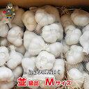 【令和元年産】青森県 ときわ産にんにく 並級品 Mサイズ(1kg・18〜23玉) 訳あり 食品 青森県産にんにく|国産にんに…