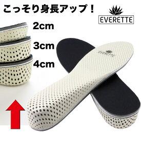 送料無料 シークレットインソール シークレット インソール足の長さが違う 靴 衝撃吸収 中敷き 低反発 身長アップ