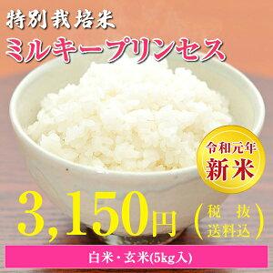 【令和元年産新米】【送料無料】秋田県 大潟村産 特別栽培米 ミルキープリンセス 5kg