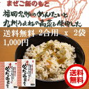 【送料無料】【2合用x2袋セット】炊きたてご飯に混ぜるだけ!冷めても美味しい!お弁当にもぴったり!福岡名物のめん…