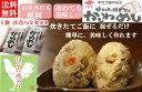 【送料無料】【かしわ飯の素】【2合用x2袋セット】炊きたてご飯に混ぜるだけ!冷めても美味しい!お弁当にもぴったり…