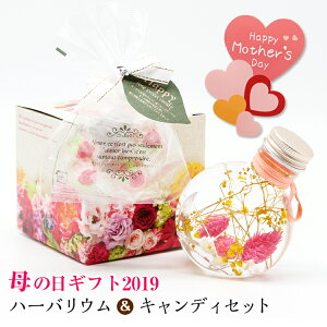 母の日ギフトプレゼントハーバリウムピンクサークル&ローズキャンディーセット【201】【送料無料】