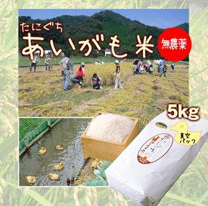 【令和 2年 新米】無農薬 たにぐちのあいがも米 5キロ(真空パック)兵庫県浜坂産 5kg