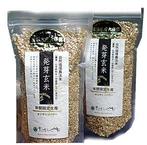 【27年度新米】【無農薬】たにぐちの発芽玄米(真空パック)