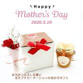 【無添加】ハチミツおろし生姜スィーツ&カーネーションセット健康を気遣う気持ちを贈ります母の日カード入