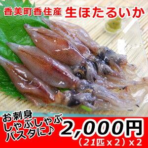 香美町香住港より直送生ほたるイカ。お刺身やしゃぶしゃぶ、パスタや塩辛など、さまざまな料理にご利用いただけます。(21匹x2)×2パック