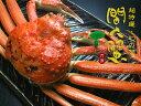 【送料無料!最高級ブランド蟹!!】茹で間人(タイザ)ガニ【ご贈答用にいかがですか?】茹で姿2Lサイズ(750〜840g)…