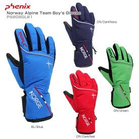 PHENIX〔フェニックス スキーグローブ ジュニア 子供用〕<2019>Norway Alpine Team Boy's Gloves PS8G8GL81