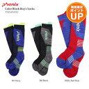 【エントリーでP10倍】PHENIX〔フェニックス ジュニア ソックス〕<2019>Color Block Boy's Socks PS8G8SO82 靴下 子…