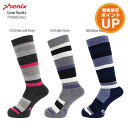 【エントリーでポイント10倍】PHENIX〔フェニックス レディース ソックス〕<2019>Line Socks PS888SO62 靴下【RSS】