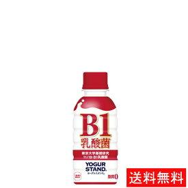 【代引き不可】ヨーグルスタンド B-1乳酸菌 PET 190ml(30本入り) 【全国送料無料】【キャンセル不可】