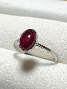 【送料無料】 Pt900 リング ルビー #373 指輪 ruby 紅玉 プラチナ