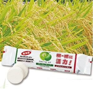 ファイトアップ(米・れんこん用)発泡型投込剤 50g×10錠 ファイト・アップ ファイトクローム社 肥料 水稲用
