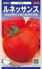 トマト 種 『ルネッサンス』 小袋(採苗本数12本) サカタのタネ