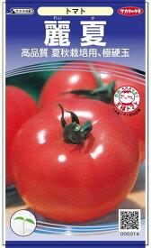 トマト 種 『麗夏』 小袋(採苗本数17本) サカタのタネ