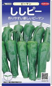 シシトウ 種 『ししピー』 小袋(採苗本数15本) サカタのタネ