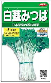 ミツバ 種 『白茎みつば』 小袋(採苗本数1200本) サカタのタネ