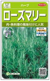 ハーブ 種 『ローズマリー』 小袋(採苗本数20本) サカタのタネ