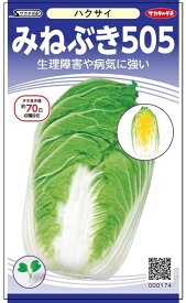 黄芯ハクサイ 種 『みねぶき505』 サカタのタネ/小袋(採苗本数140本)