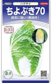 黄芯ハクサイ 種 『ちよぶき70』 サカタのタネ/小袋(採苗本数110本)