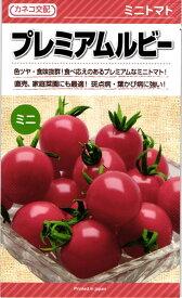 ミニトマト 種 『プレミアムルビー』 100粒 カネコ種苗