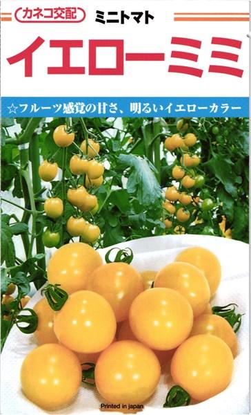 ミニトマト 種 『イエローミミ』 小袋(18粒) カネコ種苗