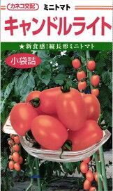 ミニトマト 種 『キャンドルライト』 小袋(19粒) カネコ種苗
