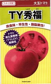 大玉トマト 種 『TY秀福』 1000粒 カネコ種苗