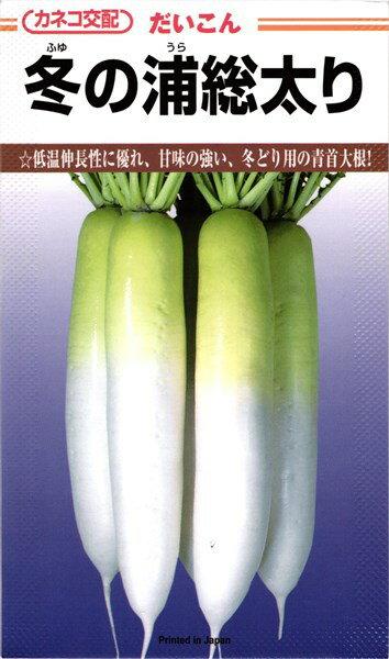 秋まきダイコン 種 『冬の浦』 小袋(4.9ml) カネコ種苗