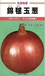 早生タマネギ 種 『錦毬』 20ml カネコ種苗